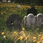 David Bucklin Gravesite